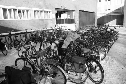 Hacia la ciudad sustentable. Apuntes sobreGuadalajara