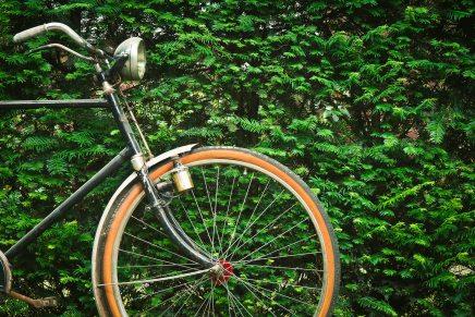 19 abril | Día mundial de laBicicleta